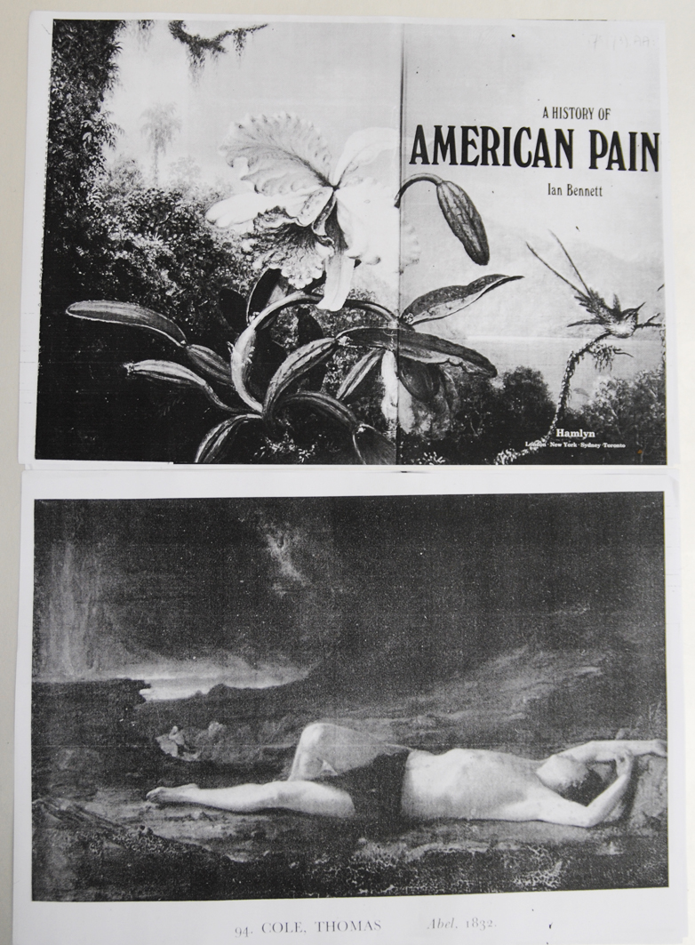 WGartz american pain collage